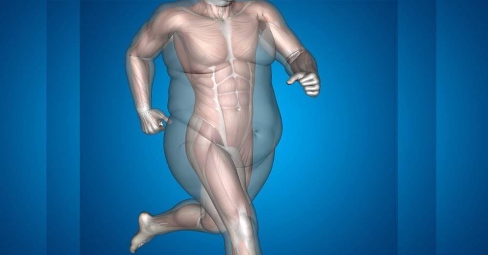 5 ejercicios que transforman tu cuerpo y queman calorías mucho más rápido q..