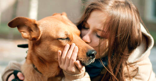 Las personas besan más a sus mascotas que a su pareja, afirma un estudio