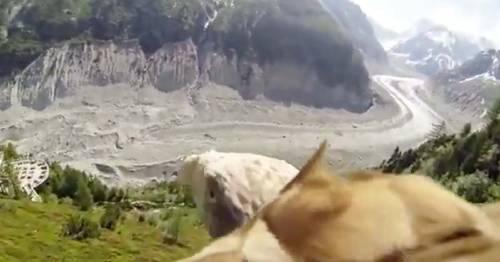 Vive una increíble experiencia desde el lomo de un águila, sentirás que est..