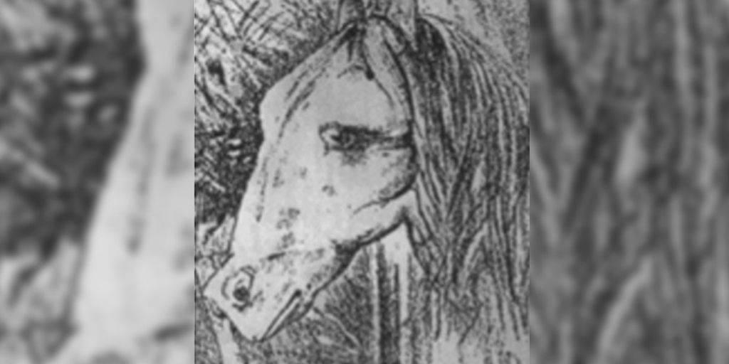 Te presentamos el juego del caballo y el animal escondido, atrévete a encontr..