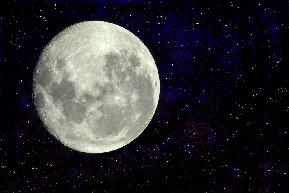 Así es el plan para enviar 6.7 millones de espermatozoides a la Luna para evitar la extinción en caso de desastre