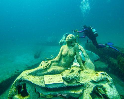 Este jardín submarino en Florida te inmortaliza como una sirena