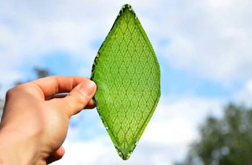 La hoja artificial capaz de hacer la fotosíntesis
