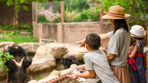 Un zoológico organizó un Baby Shower y no imaginas para quién