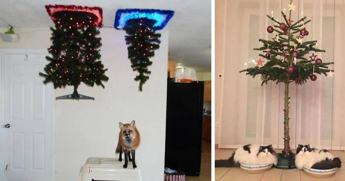 24+ fotos de árboles navideños a prueba de perros y gatos