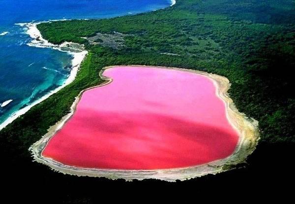 El lago hillier, un lago rosa