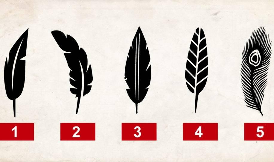 Escoge una de estas plumas, no podrás creer lo que ellas dicen de tu personal..