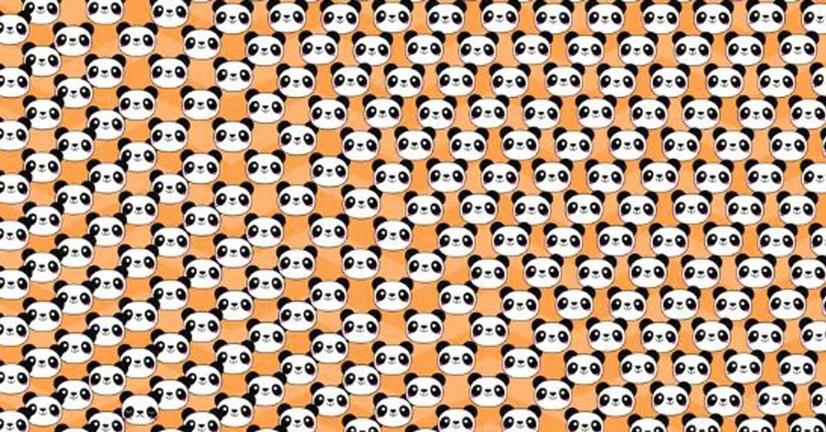¿Puedes encontrar al panda triste en esta imagen? El reto que pondrá a prueba tu agudeza visual
