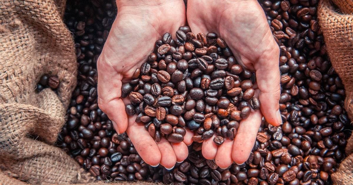 Desafío visual: ¿Puedes encontrar al hombre entre los granos de café?