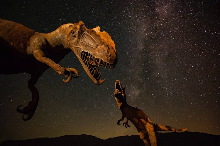 Esto es lo que pasó después del impacto del asteroide que acabó con los dinosaurios
