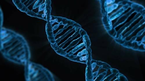 ¿Las mujeres guardan el ADN de sus parejas sexuales?