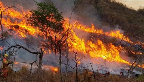 Argentina en llamas: los incendios ya afectan a 14 provincias