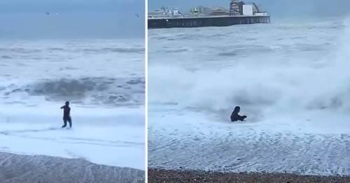 La valentía de una mujer al meterse al mar para salvar a un perro, queda plas..