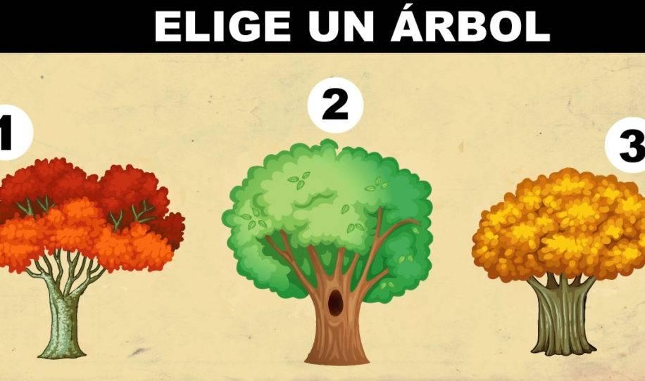 El árbol que más te guste te dirá un secreto de tu personalidad y futuro