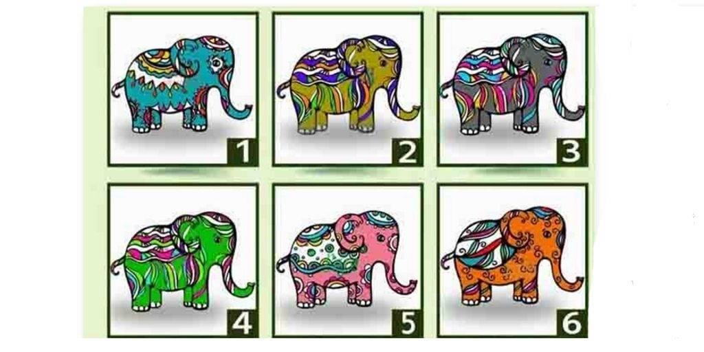 Aspectos importantes de tu espiritualidad puedes saber, si eliges un elefante