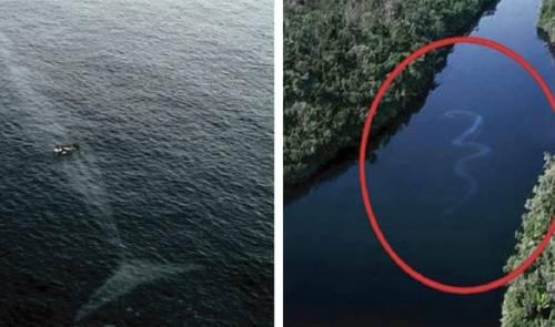 15+ fotografías que te harán temerle a la inmensidad del océano