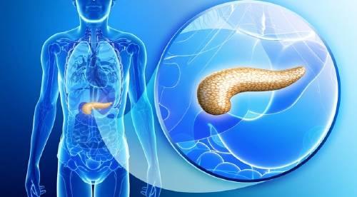 Así será el páncreas artificial para ayudar a los diabeticos