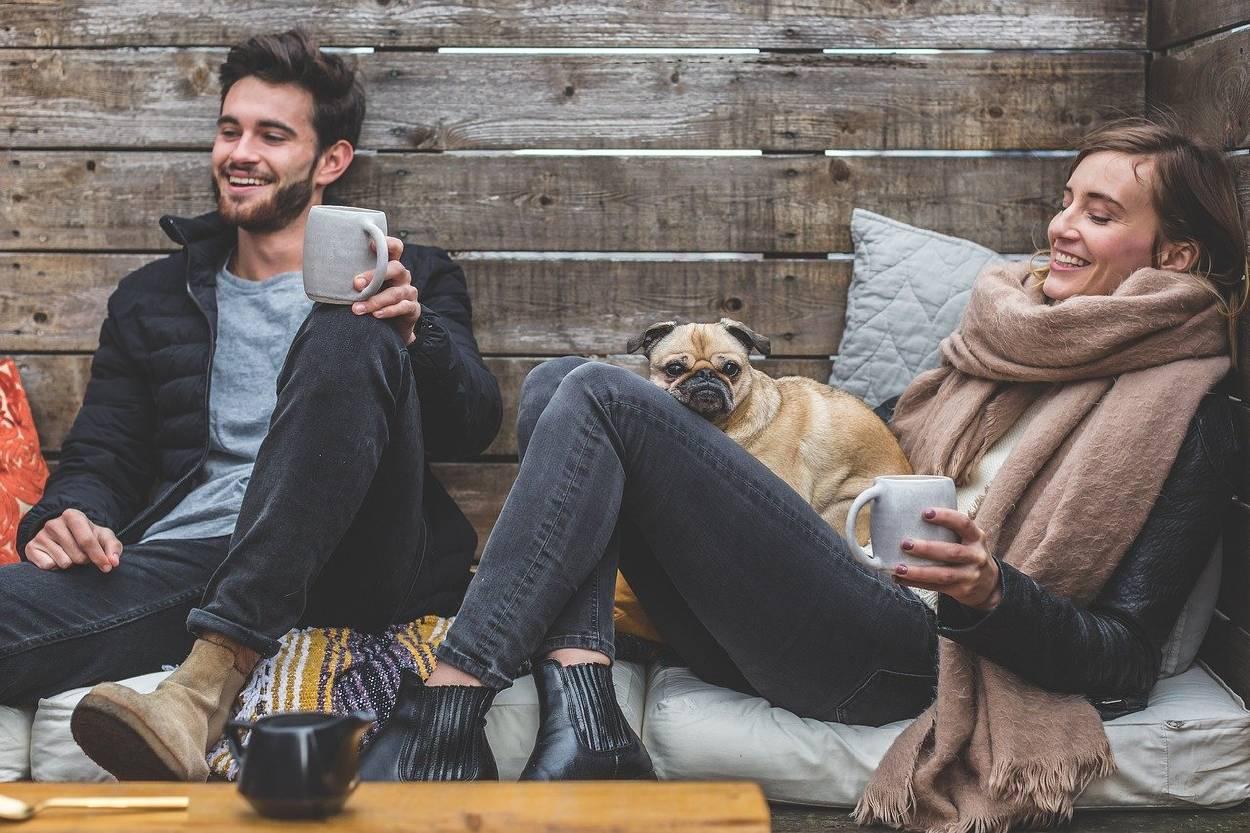 Abren una cafetería con perros en adopción