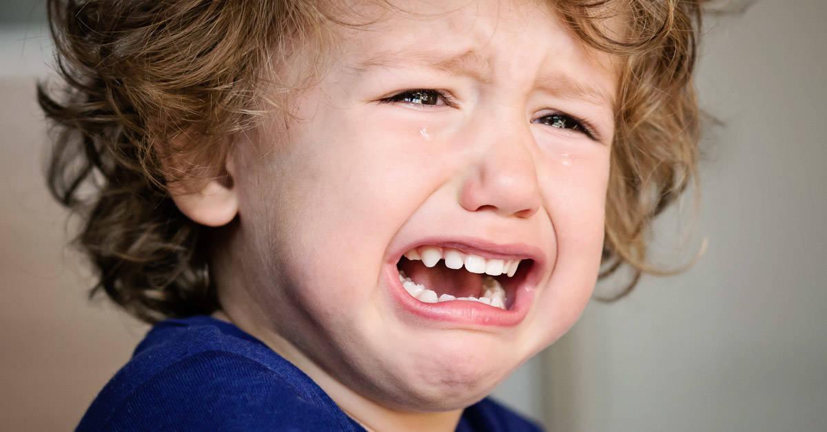 Esto es lo que pasa en el cerebro de un niño cuando le gritan