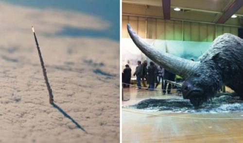 18 fotografías entrañables que debes de ver antes de morir