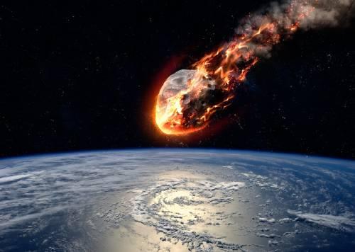 Esto sucedió después del impacto del asteroide que acabó con los dinosaurios