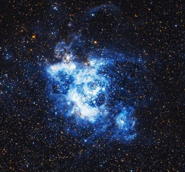Descubre el momento donde 200 estrellas bebés nacen en la Galaxia del Triángulo