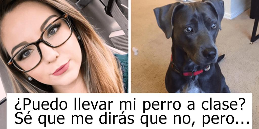 Para salvar a su perro del huracán, esta chica le pide a su profesor que le p..