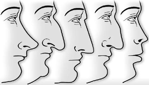 ¿puedes creer que tu nariz sea capaz de hablar de tu personalidad?